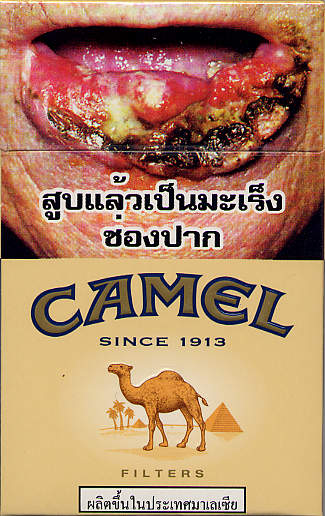 Camel Filters 20TH2010